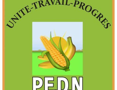 PANEL SUR LA SORTIE DE CRISE EN GUINEE : LE PEDN PREND PART AU WEBINAIRE DU 15 JUIN 2020.