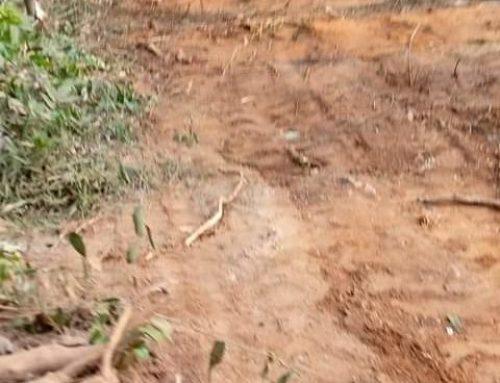 N'zérékoré : 17 victimes des violences de Macenta enterrées nuitamment dans une fosse commune