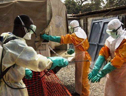 Ebola en RDC et en Guinée : l'OMS place six pays en « alerte urgente »